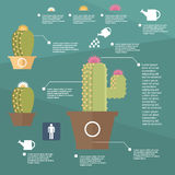 Animal husbandry infographic, agriculture, , flat design, elements Royalty Free Stock Photos