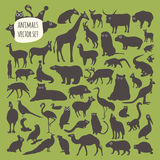 Animal  icon set. On a green background Royalty Free Stock Image