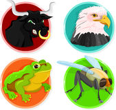 Animal icons Stock Photos