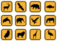 Animal icons. Stock Images
