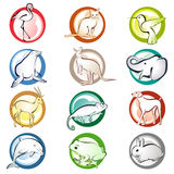 Animal icons Stock Photo
