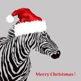 Animal Illustration Of Vector Zebra Silhouette Royalty Free Stock Photography