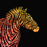 Animal illustration of vector zebra silhouette with golden sparkley elements. Stock Image
