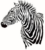 Animal illustration of  zebra silhouette Royalty Free Stock Photos