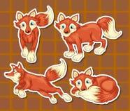 Animal isolado Imagem de Stock
