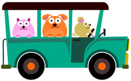 Animal jeep ride Royalty Free Stock Image