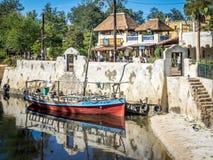 Animal Kingdom Theme Park, Dinsey World stock photos