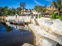 Animal Kingdom Theme Park, Dinsey World Royalty Free Stock Photo