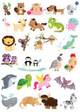 Animal Letter vector set Royalty Free Stock Photo