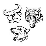 Animal logo. Vector set of black bull head, wolf head and Tiger head  on white background. Animal logo Royalty Free Stock Image