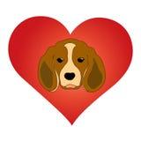 Animal love symbol. stock photos