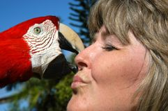 Animal Lover. Woman leans for a kiss from a parrot.  Animal lovers love all kinds of animals Stock Photo
