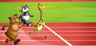 An animal marathon Stock Image