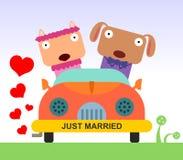Animal marriage Stock Photo