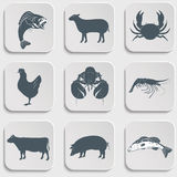 Animal, Meat, Seafood and Eating Royalty Free Stock Photos