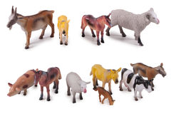 Animal model toys. Isolated farm animal model toys on white background Stock Images