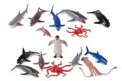 Animal model toys. Isolated oceanic animal model toys on white background Royalty Free Stock Image