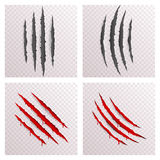 Animal Monster Claws Blood Bleeding Scratches Torn Material Template Set Transparent Background Mock Up Design Vector Stock Photos