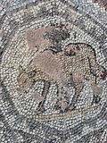 Animal Mosaic. Mosaic outside a medieval church in Paphos, Cyprus stock photo