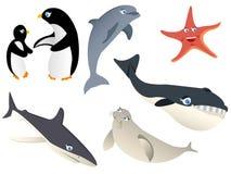 Animal natural abstrato, vida marinha Fotos de Stock Royalty Free
