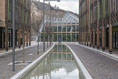 Animal naturel de musée de Muse dans Trento Images libres de droits