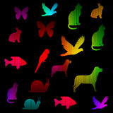 Animal neon spectrum glowing Stock Photo