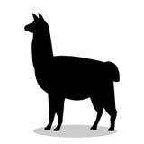 Animal noir mammifère de silhouette de lama illustration libre de droits