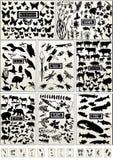 Animal, oiseau, poissons, insecte, guindineau et plante Images libres de droits