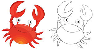 Animal outline for crab Royalty Free Stock Photography