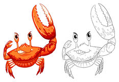 Animal outline for crab. Illustration Stock Image