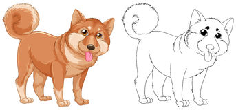 Animal outline for shiba dog. Illustration Stock Photos