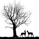 Animal over tree Forest landscape with deer. Abstract  ill. Ustration of winter forest.  illustration silhouette of beautiful family deer and tree Stock Photo