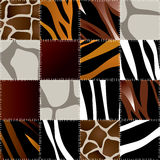 Animal patchwork Stock Photo