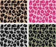 Animal pattern. In four different colour combinations Royalty Free Stock Photos