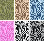 Animal pattern seamless. Animal pattern in six different color combinations royalty free illustration