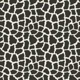Animal pattern Stock Images