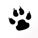Animal paw. Isolated on white background Royalty Free Stock Photography