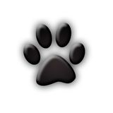 Animal paw print. Paw prints on white background Royalty Free Stock Images