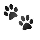 Animal paw prints. Isolated paw prints on white background Stock Photography