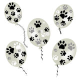 Animal paw prints balloon vector Stock Image