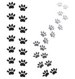 Animal paw prints. Vector illustrations of the animal paw prints Royalty Free Stock Photo