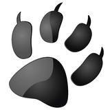Animal pawprint Stock Images