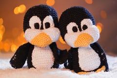 Animal penguin Stock Photos