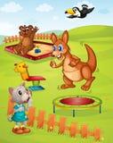 Animal playground Royalty Free Stock Photo