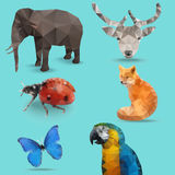 Animal Polygon Stock Images