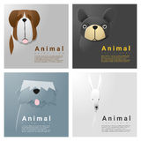 Animal portrait collection with dogs Royalty Free Stock Images