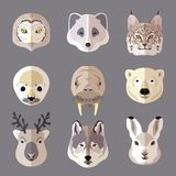 Animal portrait flat icon set Royalty Free Stock Photography