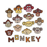 Animal Portrait Monkey. Vector illustration Royalty Free Stock Photography