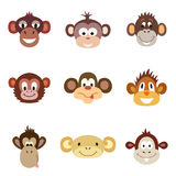 Animal Portrait Monkey. Vector illustration Stock Photos