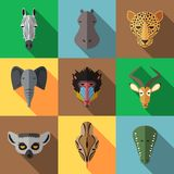 Animal Portrait Set with Flat Design. African Animal Portrait Set with Flat Design. Vector Illustration Royalty Free Stock Photo